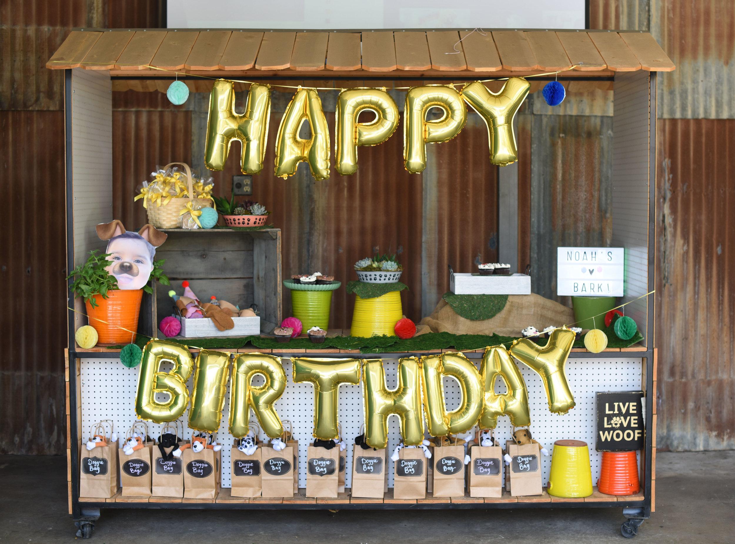 Alternative outdoor birthday party
