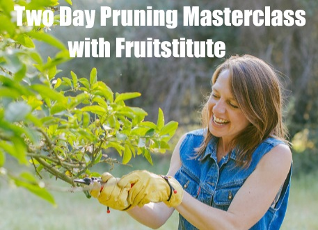 Fruitstitute Classes - Everything you need to know about fruit trees can be done through attending Fruitstitute's workshops. We offer seasonal partnered classes offsite and onsite. Keep a look out!