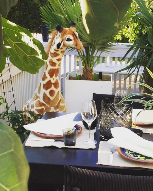 Vi flyttet stuen ut på terrassen i sommer når Giraff inviterte til party.