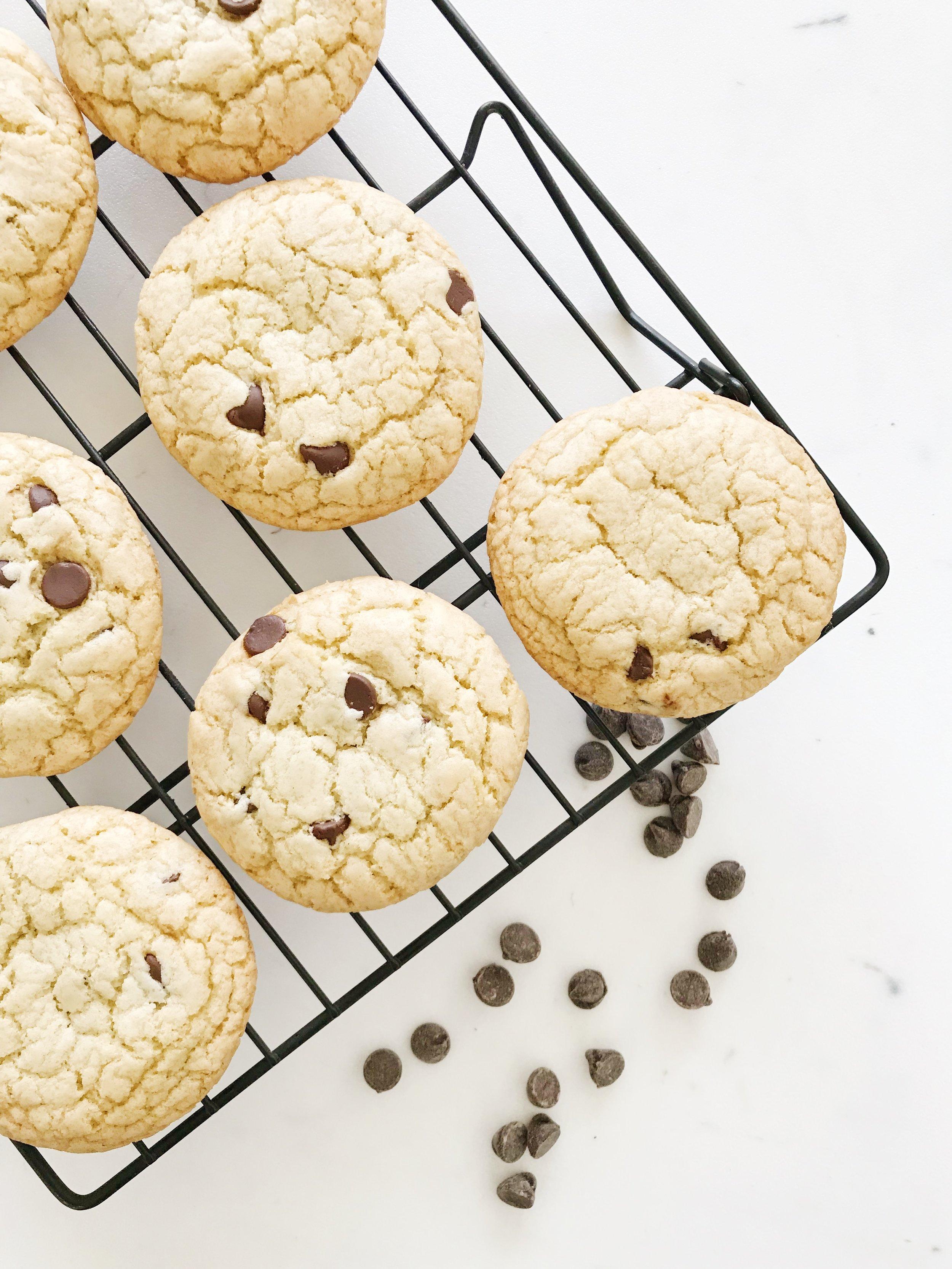 Chocolate Chip Cookie.JPG
