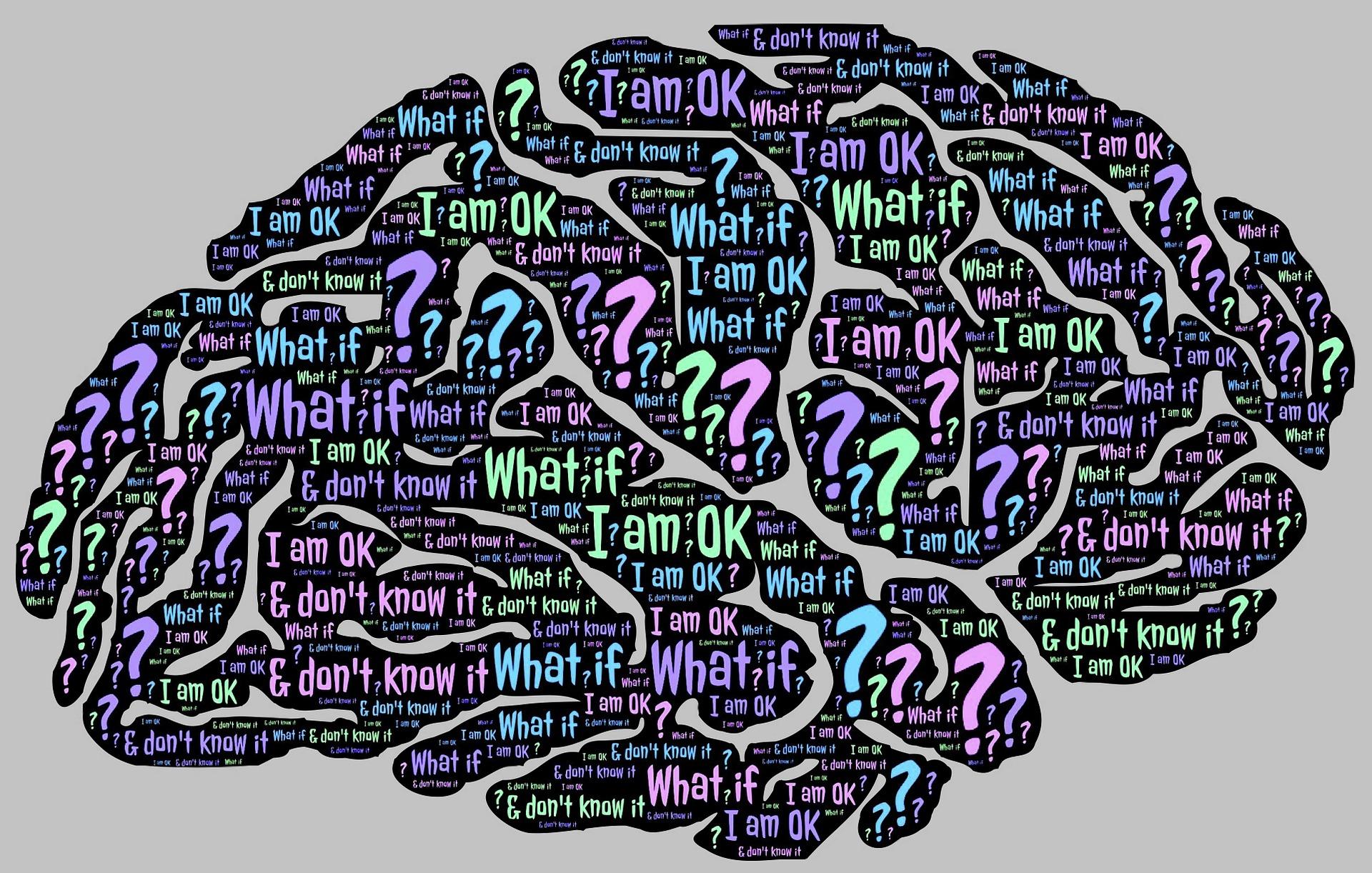brain-962589_1920.jpg