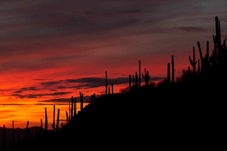 Sunset at Gates Pass, Tucson  Photo: Lynda Churilla