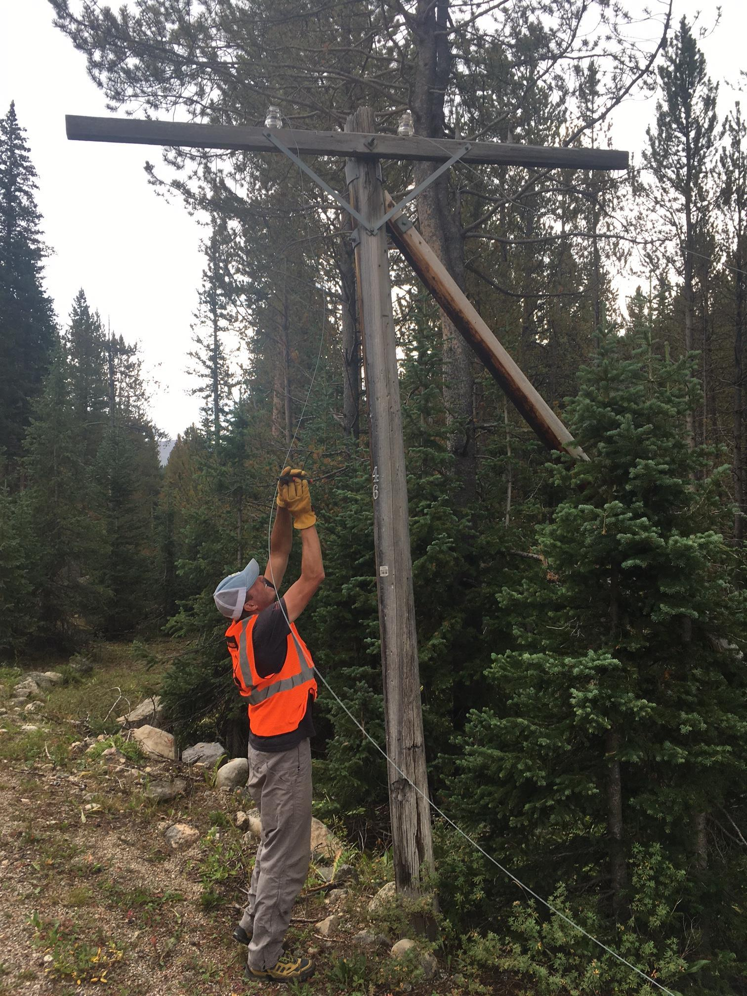 Tim removing old telephone wires from the Independence Pass Corridor