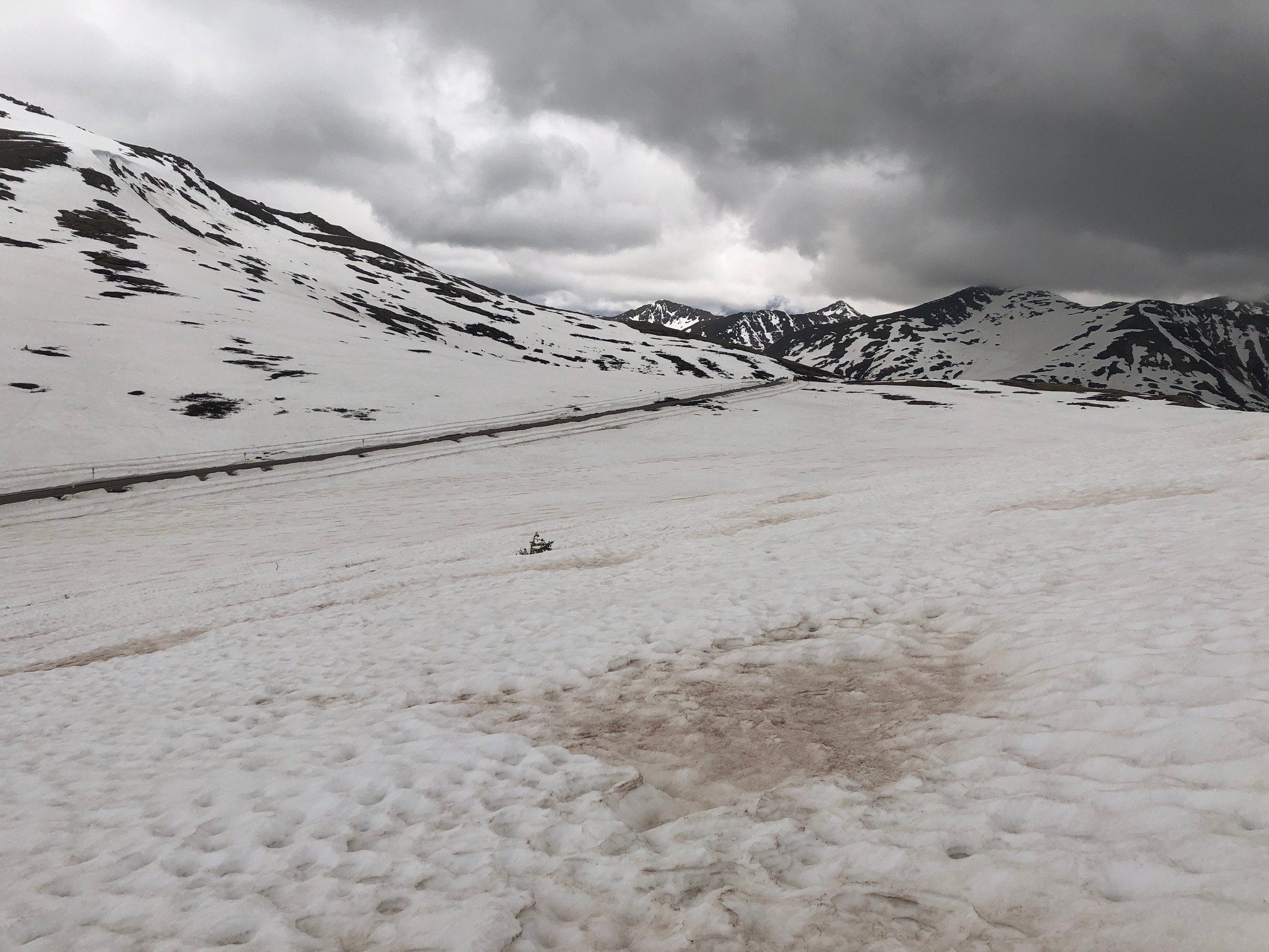 2019 snowpack early June