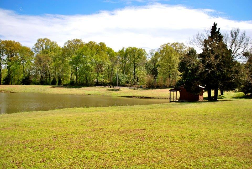 mayberry hill homestead pond.jpg