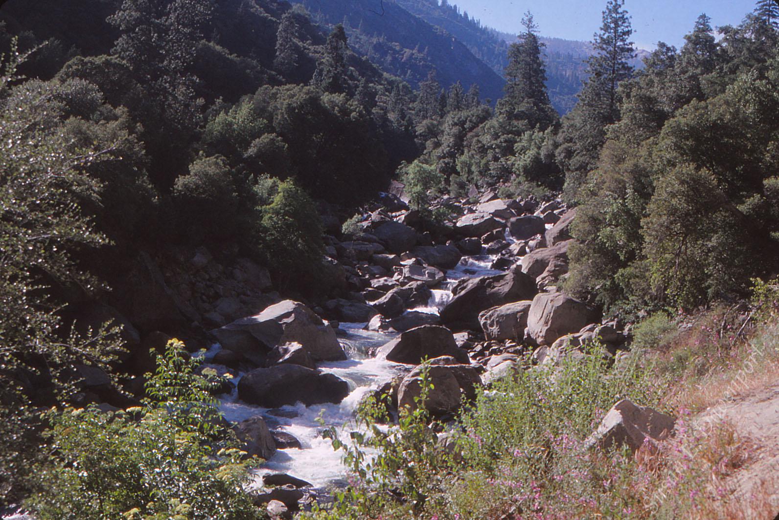 Yosemite: Rushing Rapids
