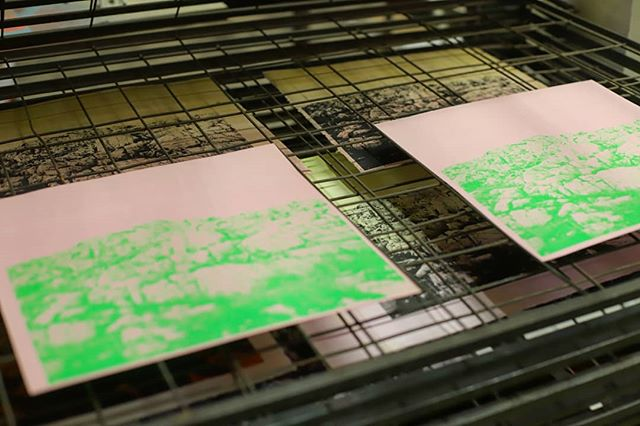 Interesting print project from a few weeks back. Fluro ink on a powered pink colour plan paper. 😍 . . #albumcover #limitededition #screenprinting #handprinted #exclusive #ohmydays