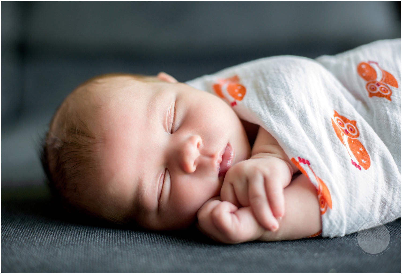 New Hampshire Newborn Photographer_001.jpg