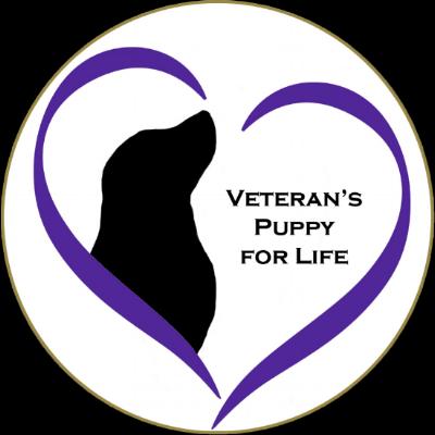 Logo VP4L Vs 3.png
