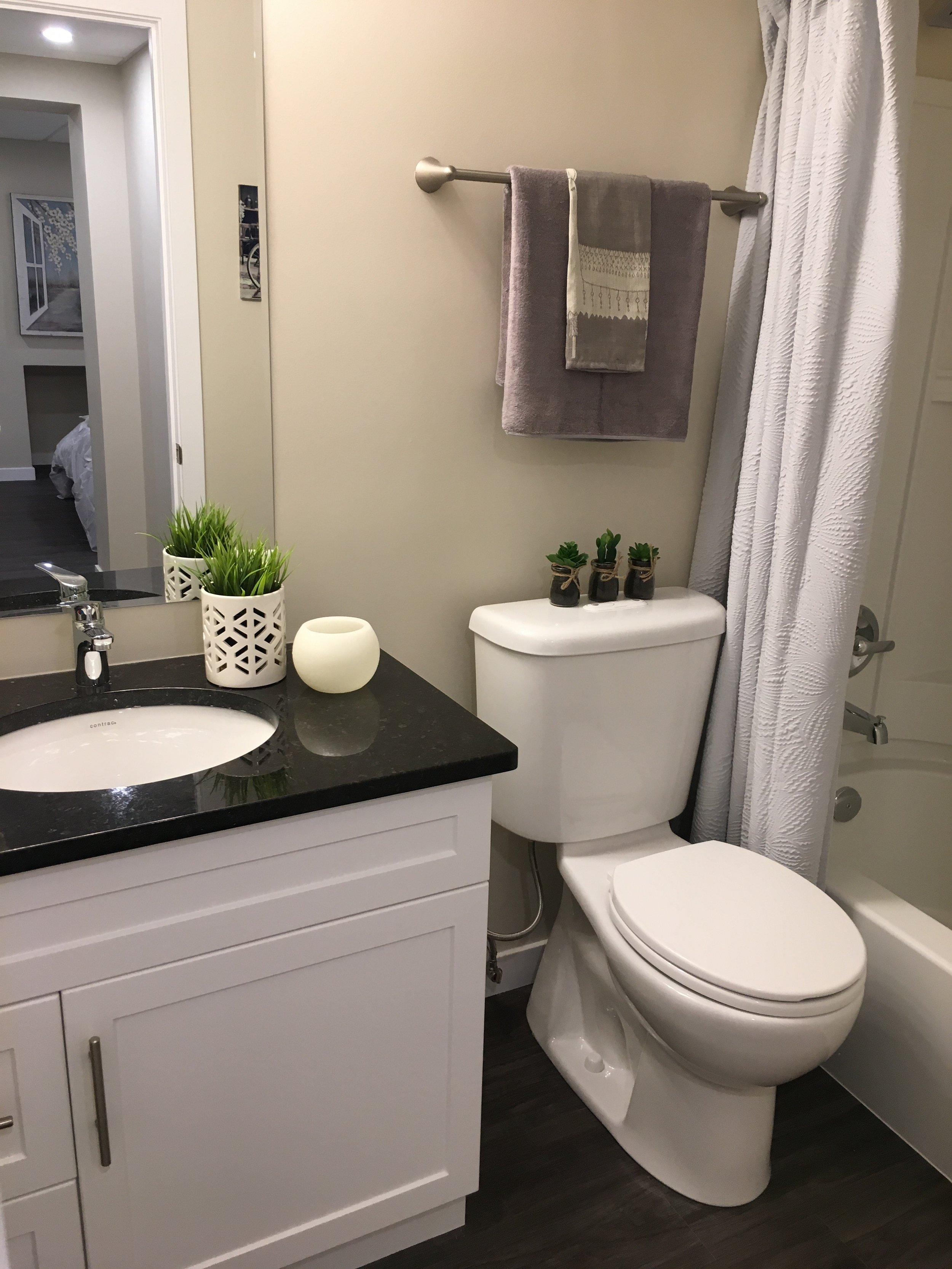 Open Concept Suite_Bathroom_v5.jpg