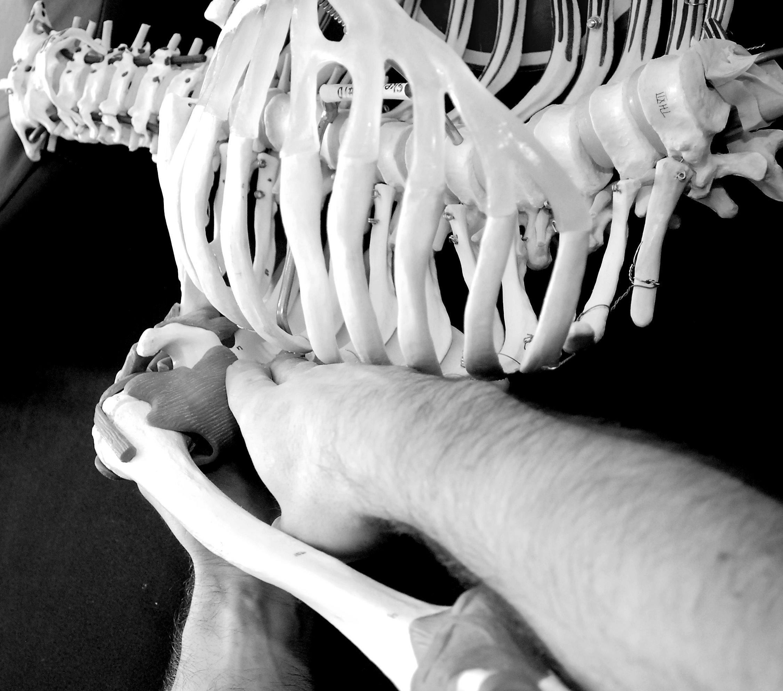 Photo Shoot 1 A Skeletal Shots 067aa.jpg