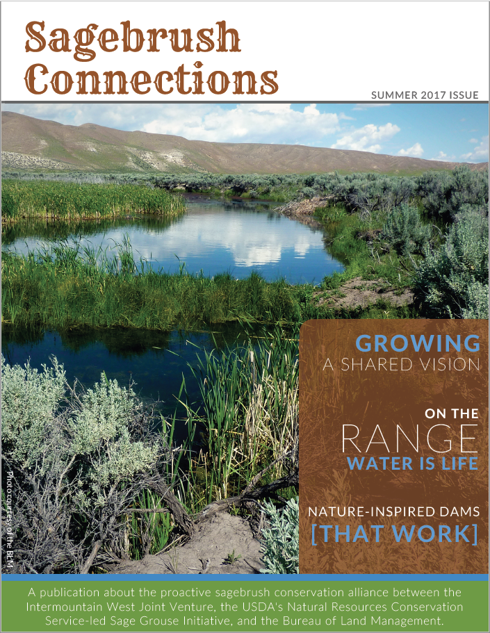 Summer 2017, Issue 1 - Sagebrush Connections, a publication about the proactive sagebrush conservation alliance between the Intermountain West Joint Venture, the USDA's Natural Resources Conservation Service-led Sage Grouse Initiative, and the Bureau of Land Management.