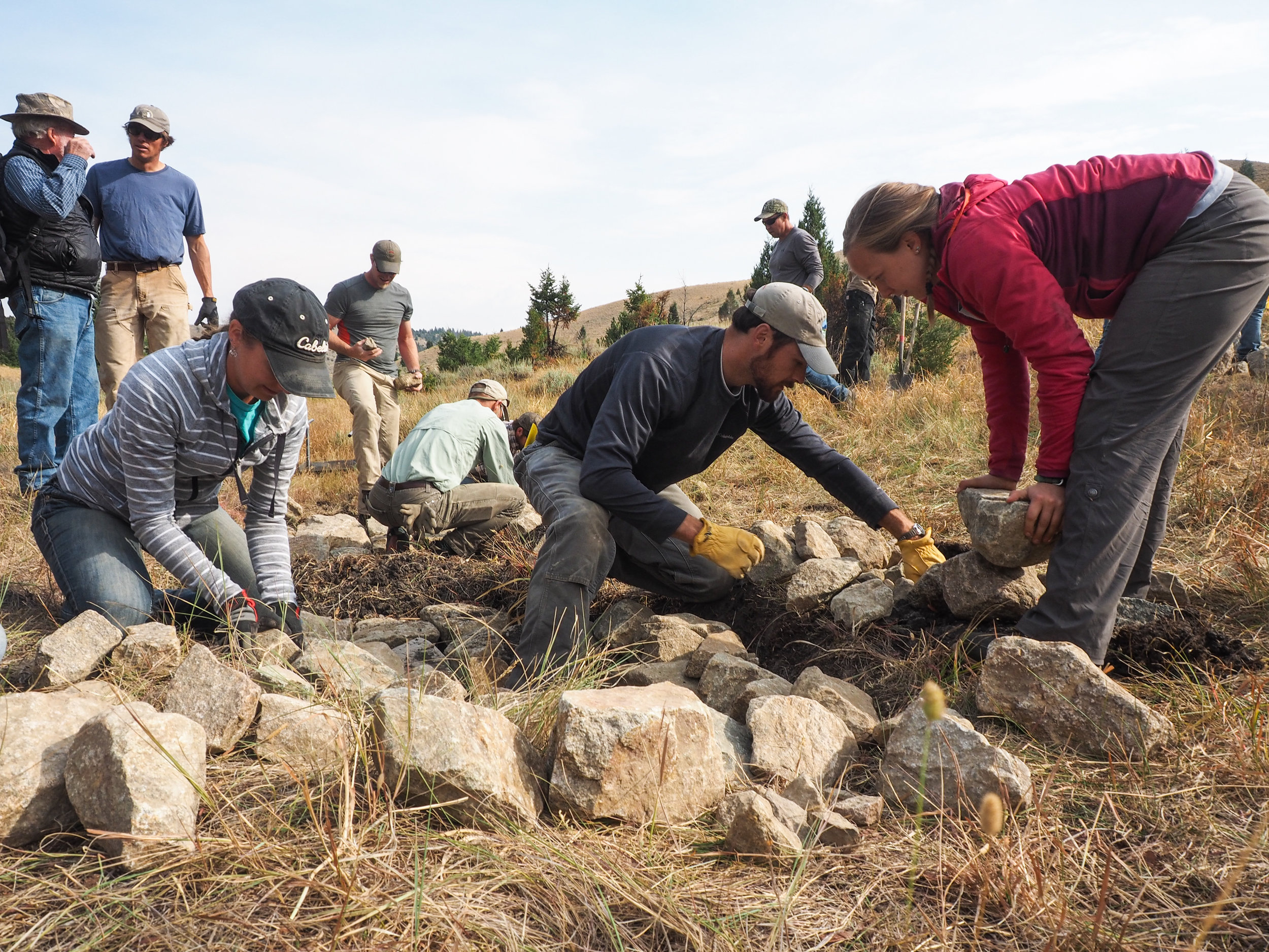 Low-tech restoration efforts, like using Zeedyk structures or  beaver dam analogs , are some of the key conservation actions the  Sage Grouse Initiative  suggests ranchers can take to benefit both working lands and wildlife. The Initiative is working with partners to host trainings that help spread the word.