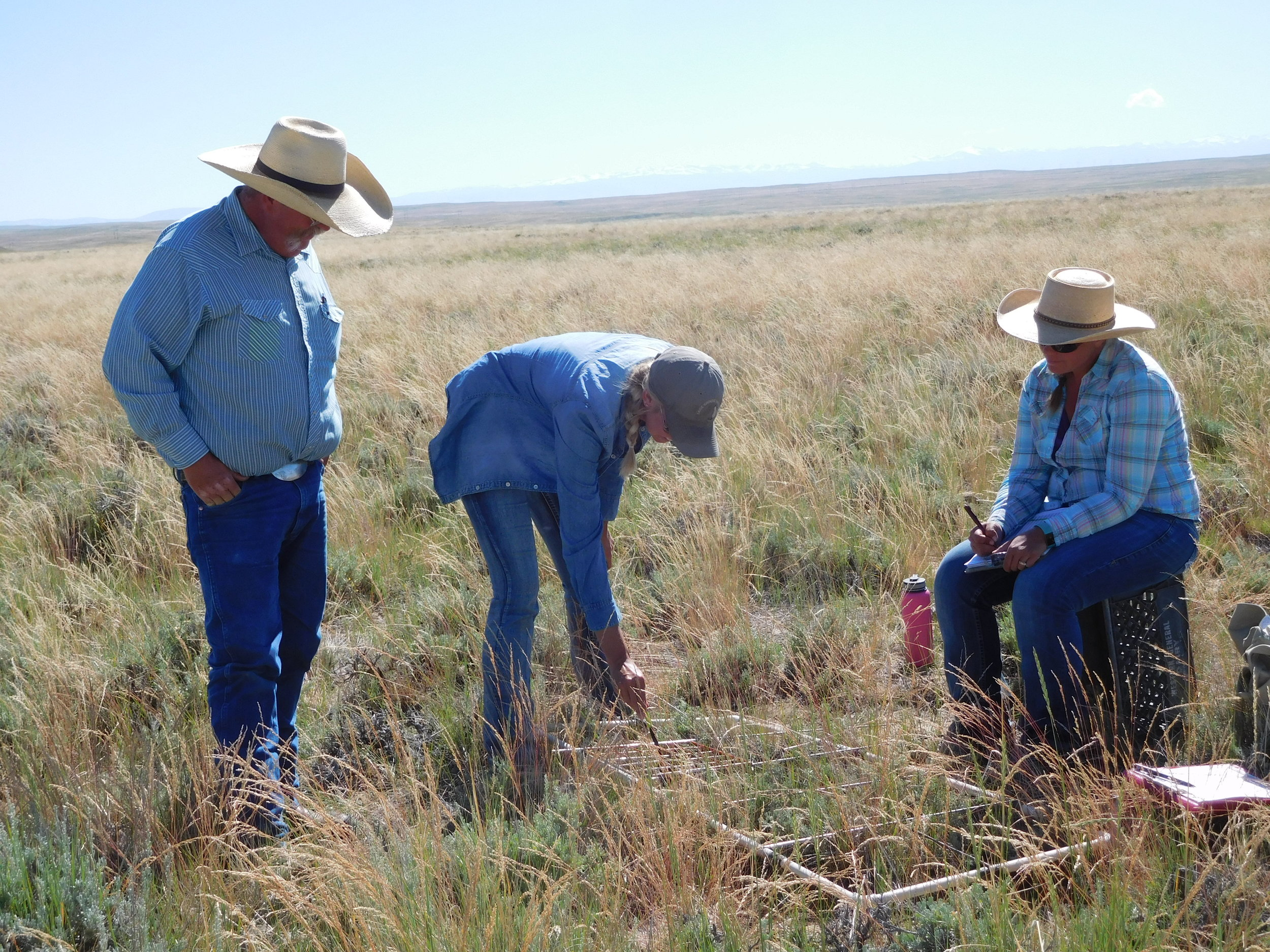 - Here, I'm working with a Range Conservationist from the BLM and a rancher to monitor range health on public land enrolled in an SGI/BLM grazing plan. Photo by Ivan Laird.