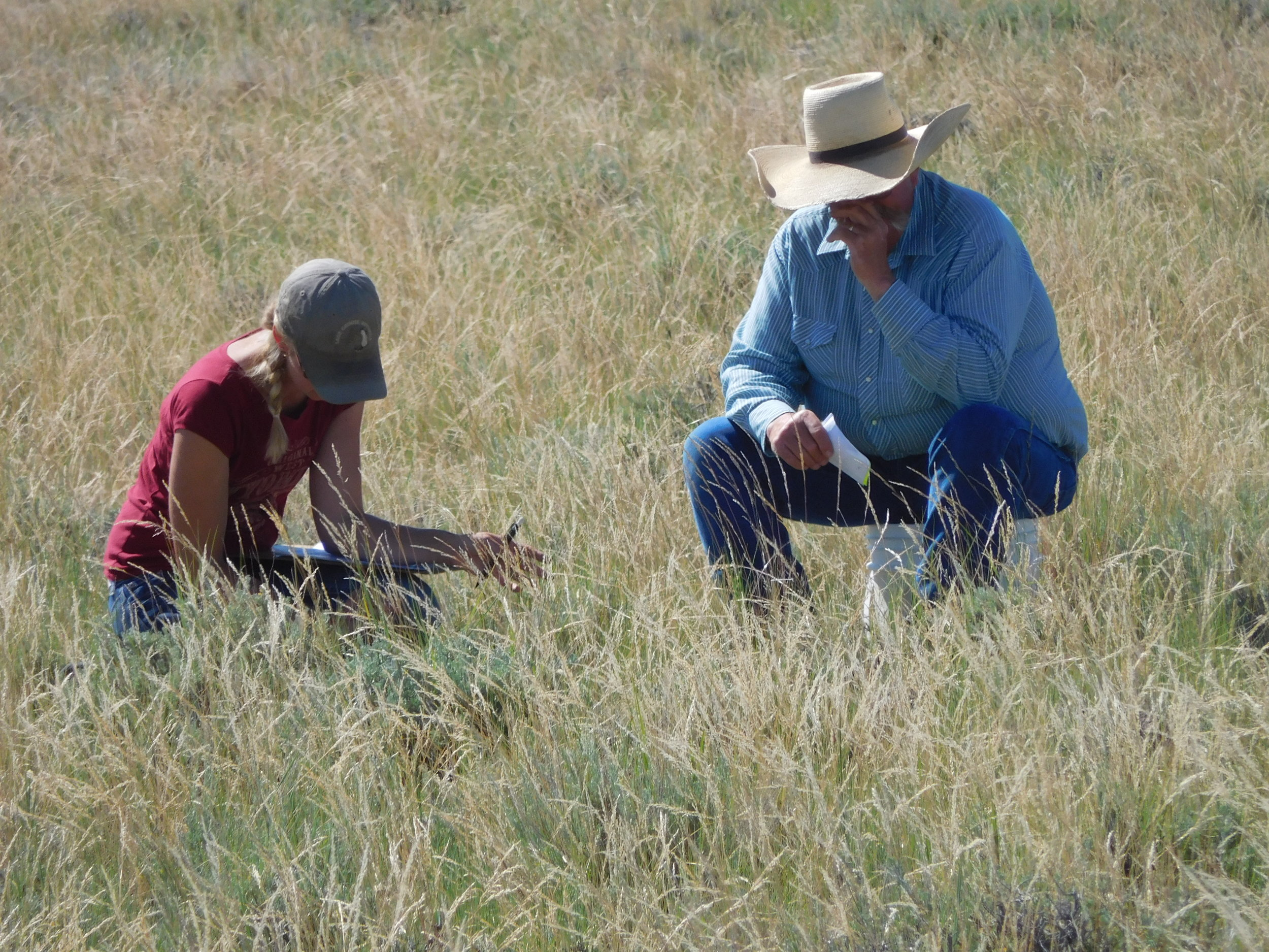 WY_Hirsch teaching a producer about rangeland health and monitoring_Ivan Laird.JPG