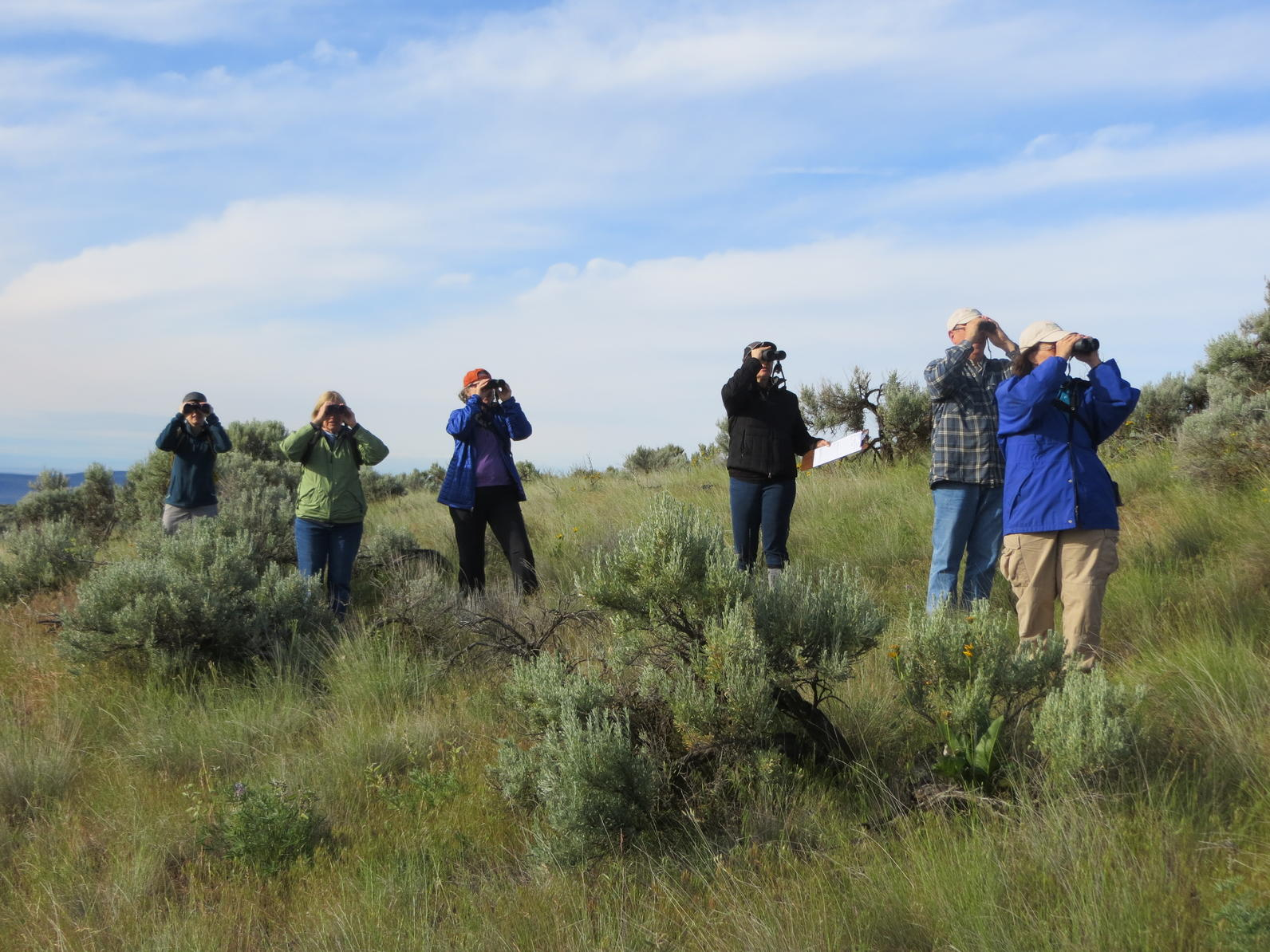 5 Fire Tips for Birding in Sage Country - By Audubon Washington