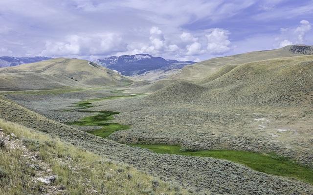 SMALL iStock-Montana Sagebrush Mesic Riparian Ribbon.jpg