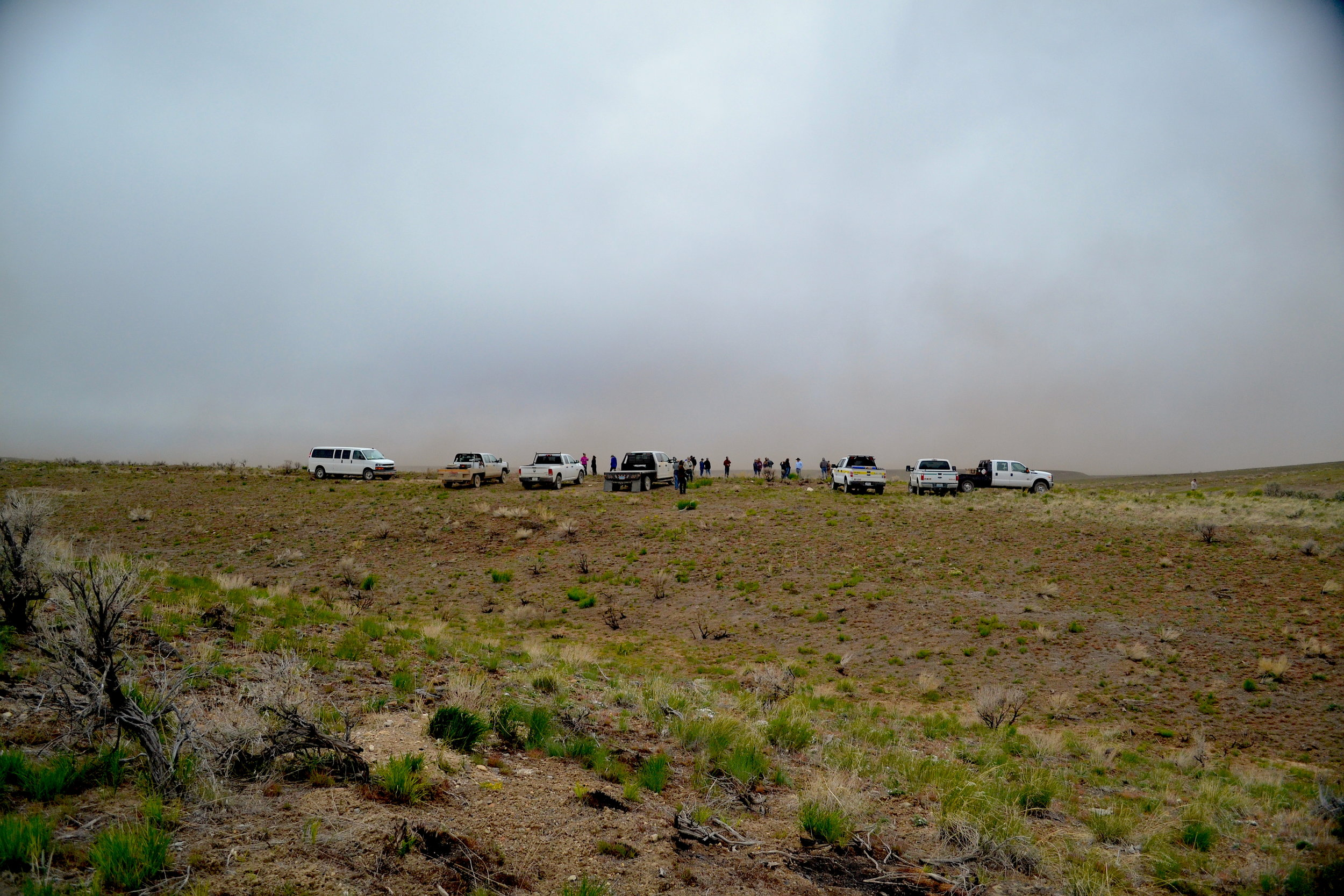 While visiting the 2018 Martin Fire scar, a large windstorm lifted topsoil and ash in the air and pelted the tour's attendees. Matt Murphy, BLM Elko Acting Fire Management Officer, said these winds were similar to those that pushed the Martin Fire to burn 435,000 acres in just a few days.