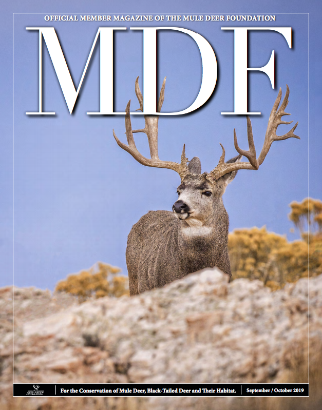 Click here to read this full article from the Mule Deer Foundation Journal's 2019 September/October issue.