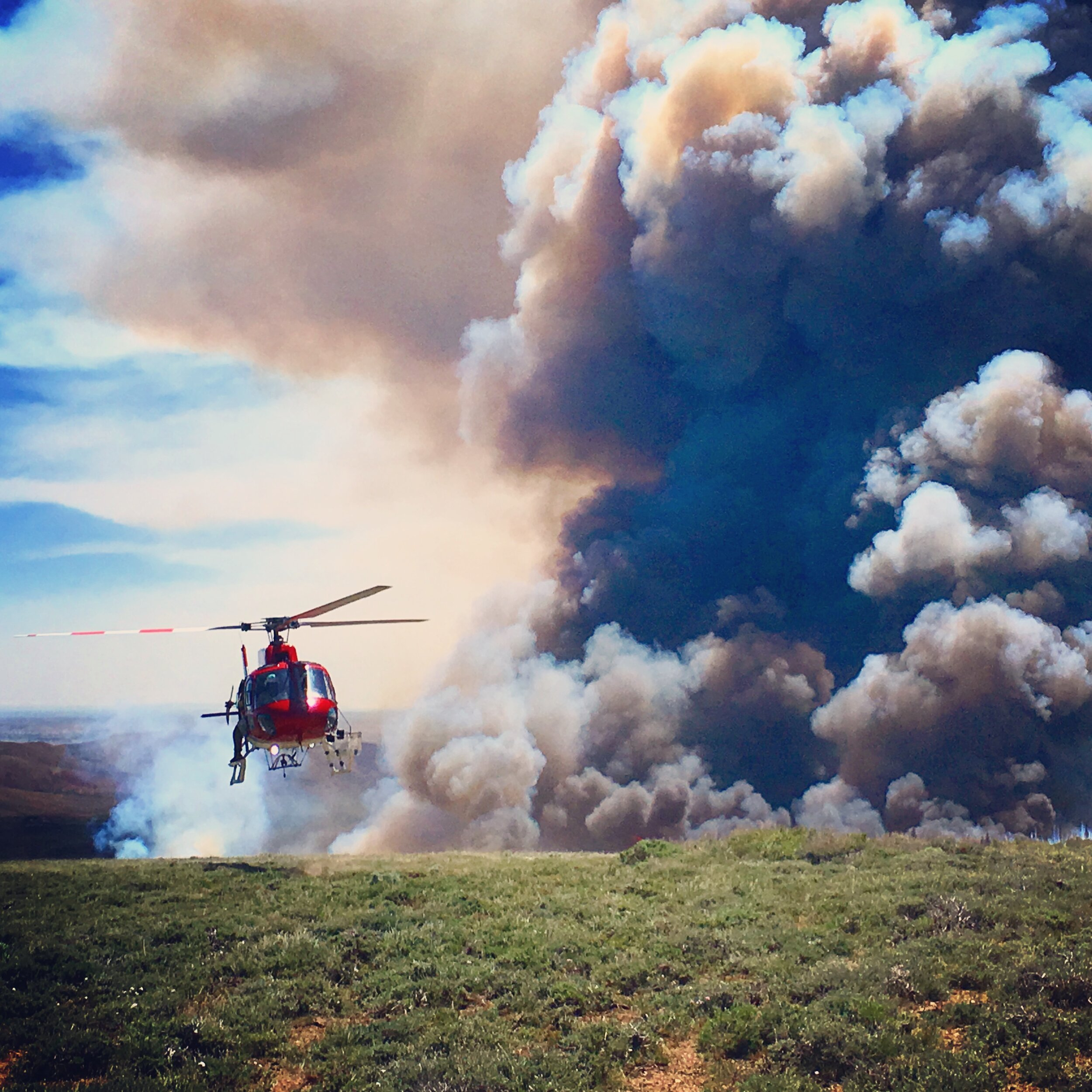 Editor's note:    This U.S. Forest Service publication    provides detailed techniques for selecting the most appropriate treatments for managing pinyon-juniper encroachment in sagebrush-steppe ecosystems. Download it    here   . Photo of a prescribed burn by the Bureau of Land Management.