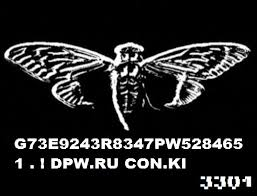 The blurry cicada image. They'll sometimes bury these in images so you can be sure you're getting a real clue.