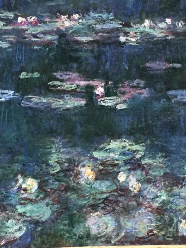 Claude Monet's  Waterlilies