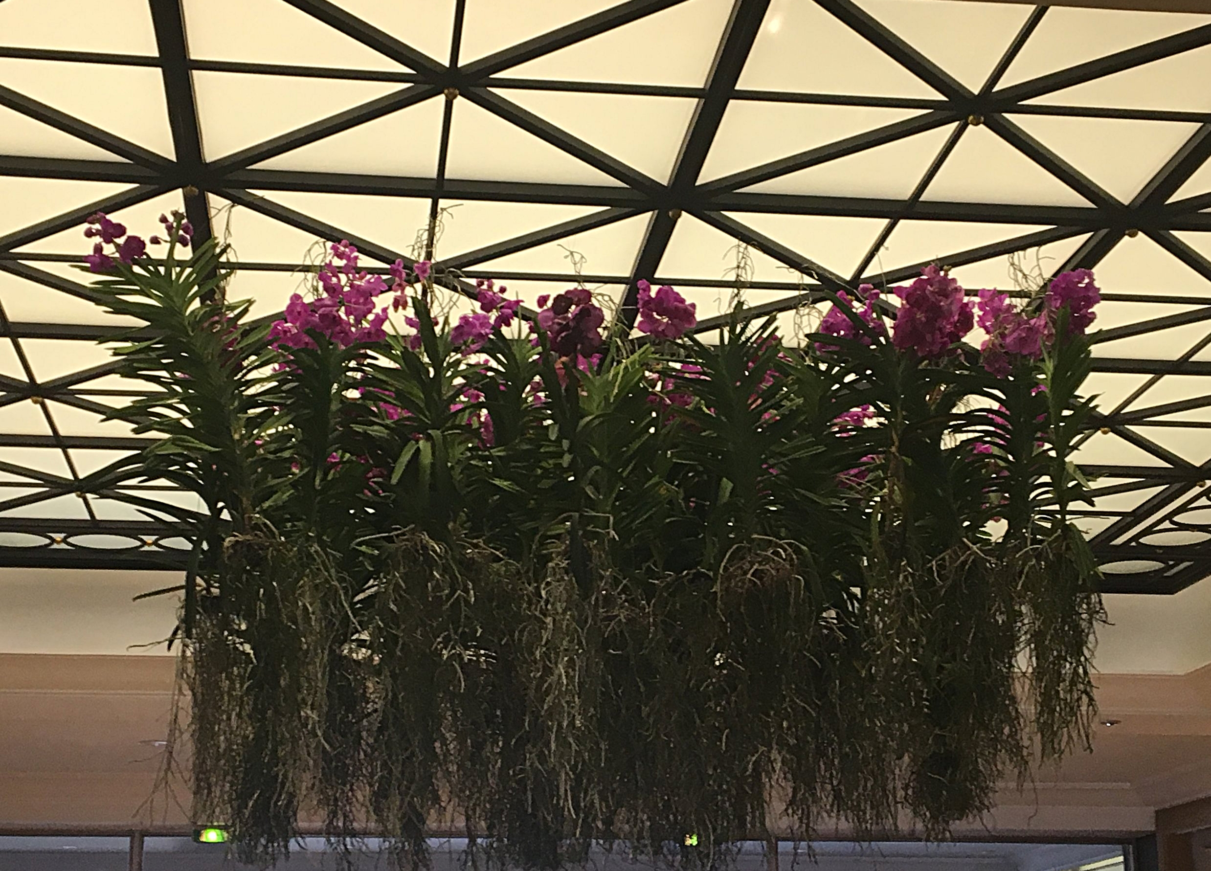 Four Seasons Hotel Ritz Lisbon Lobby Flowers