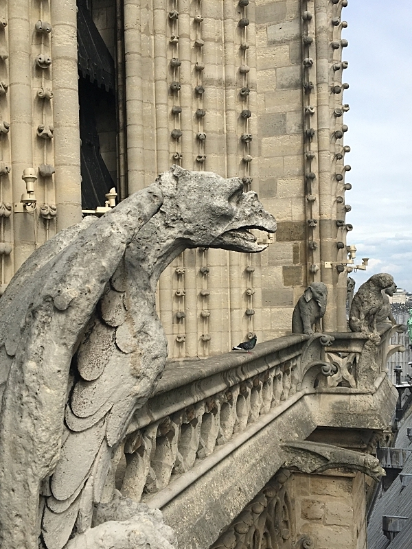 Gargoyles Up Close