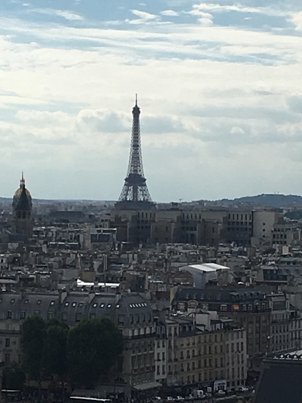View of Eiffel Tower from Notre-Dame