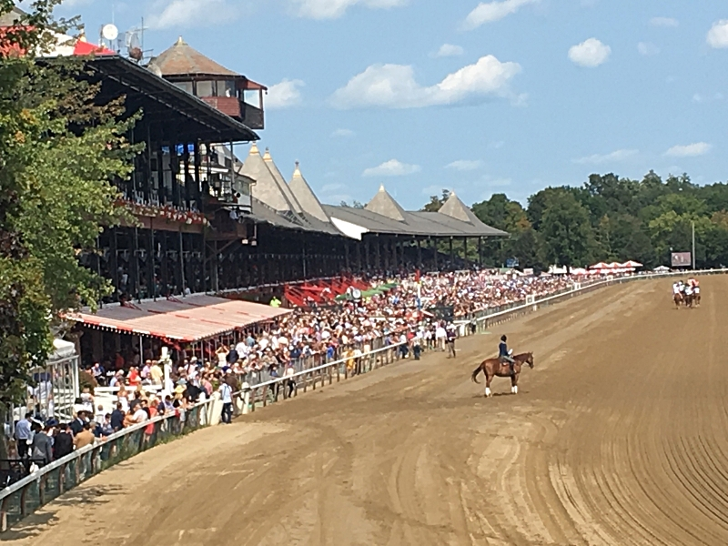 View of the stands from the track