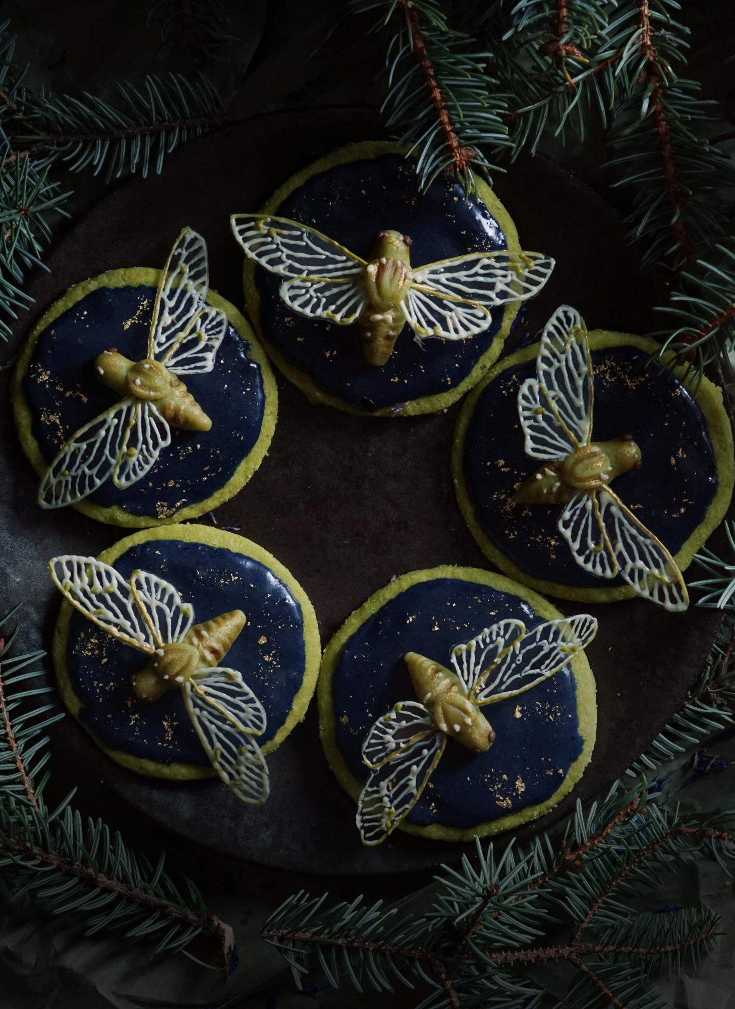 cicada cookies 6 small.jpg