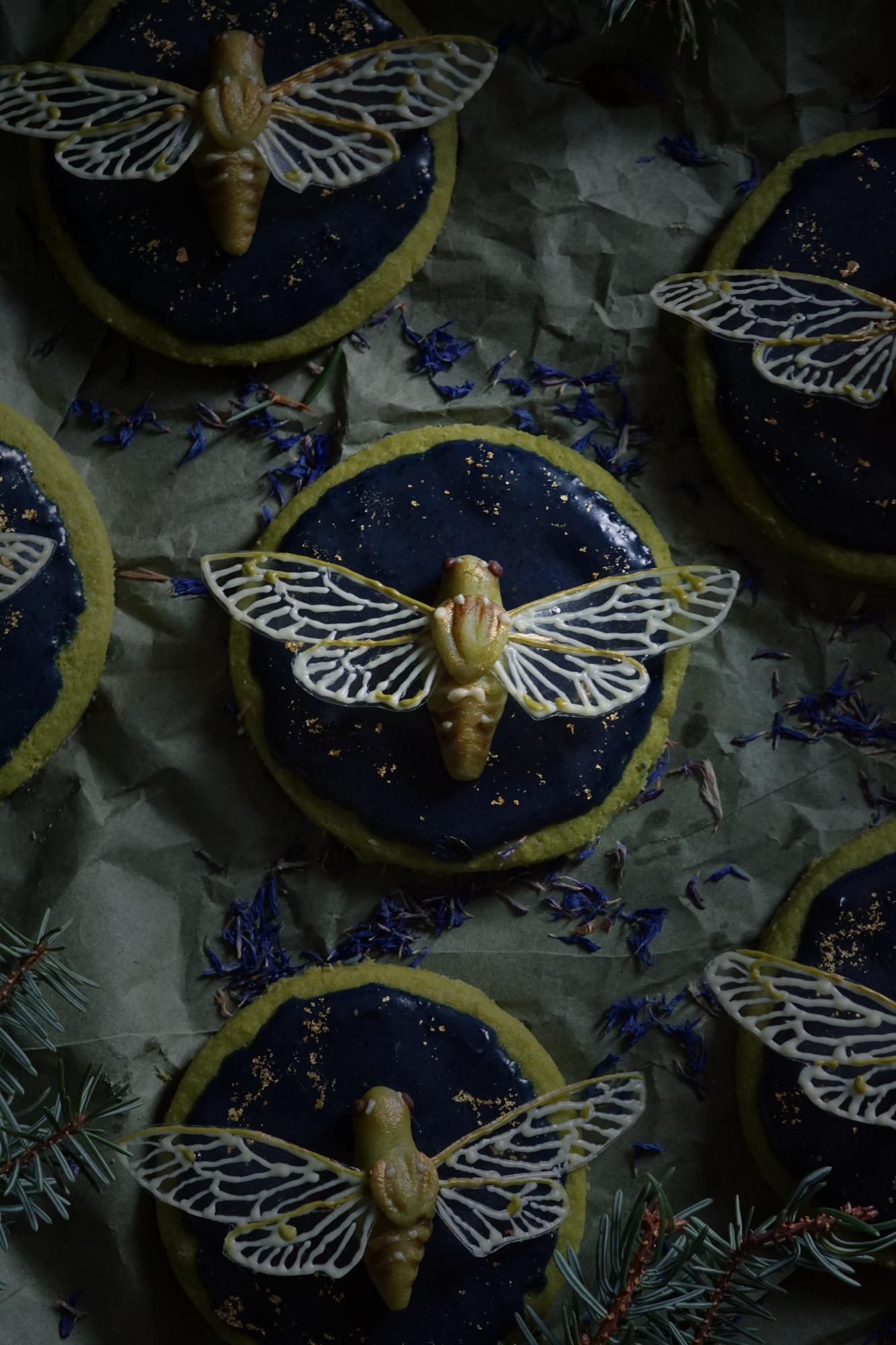 cicada cookies 2 small.jpg