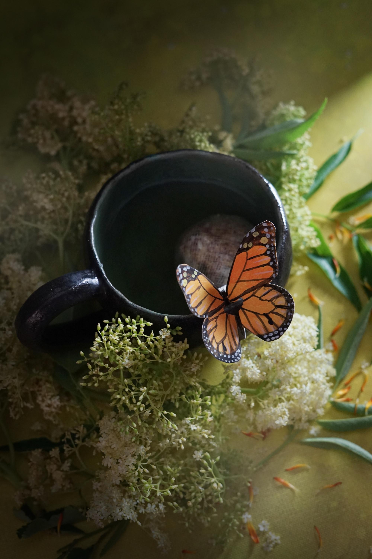 butterflytea4small.jpg