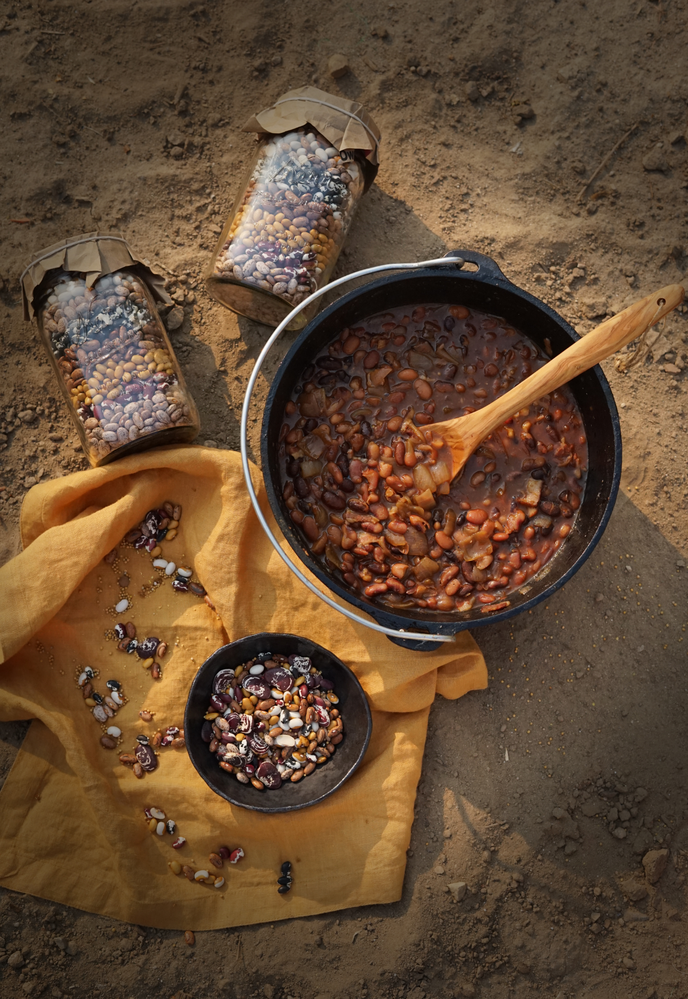 beanholebeans1small.jpg