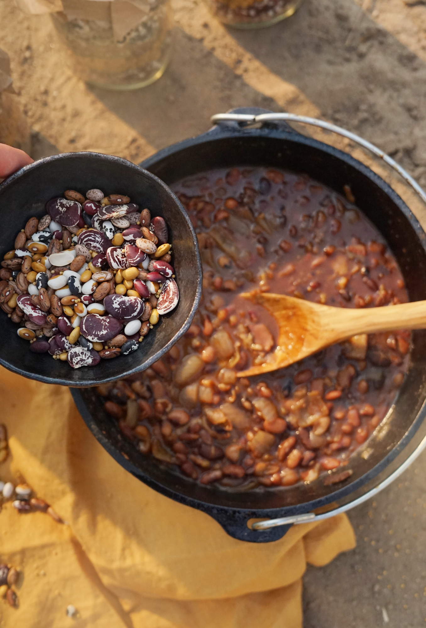 beanholebeans3small.jpg