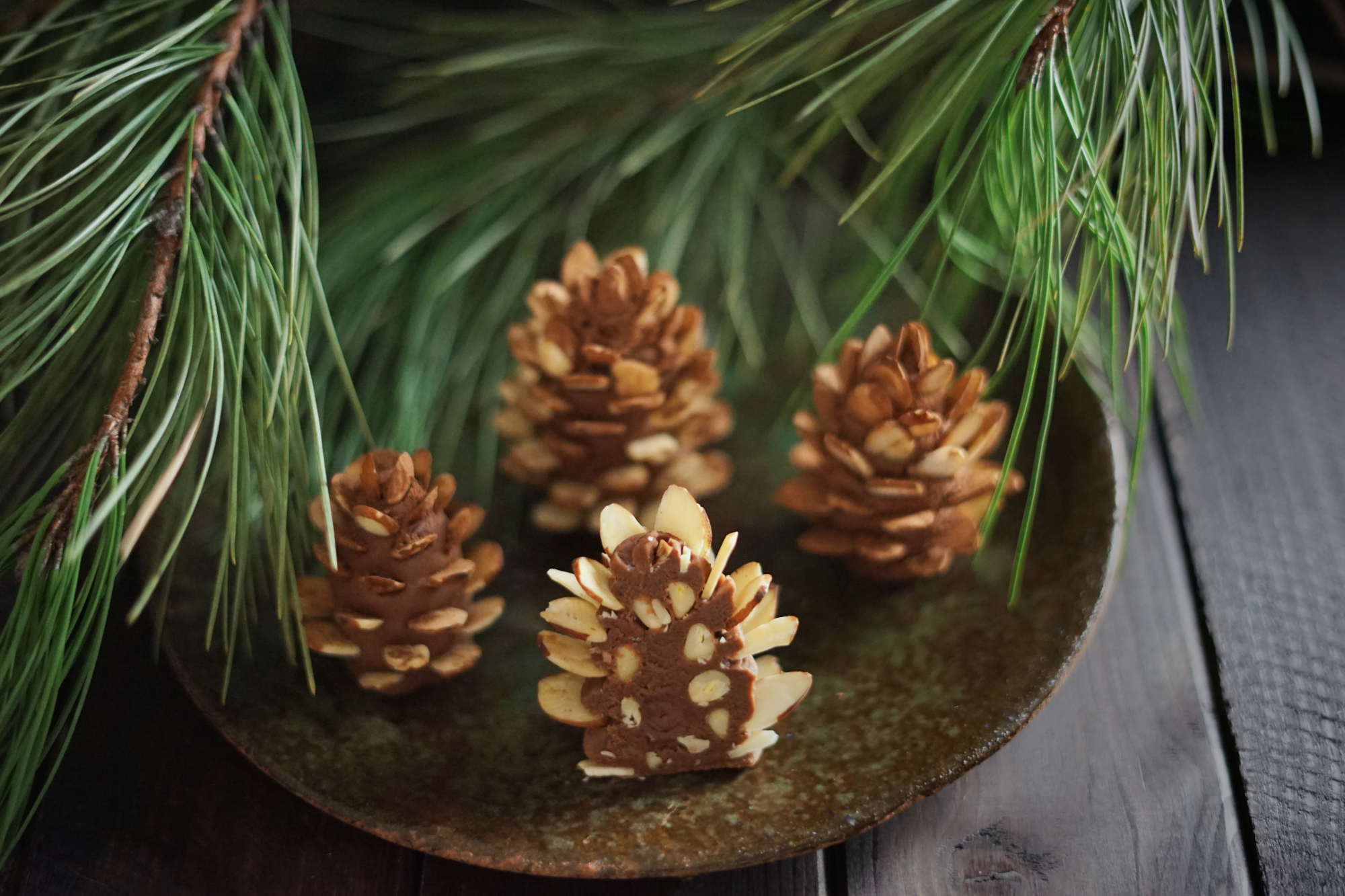pinecones5small.jpg