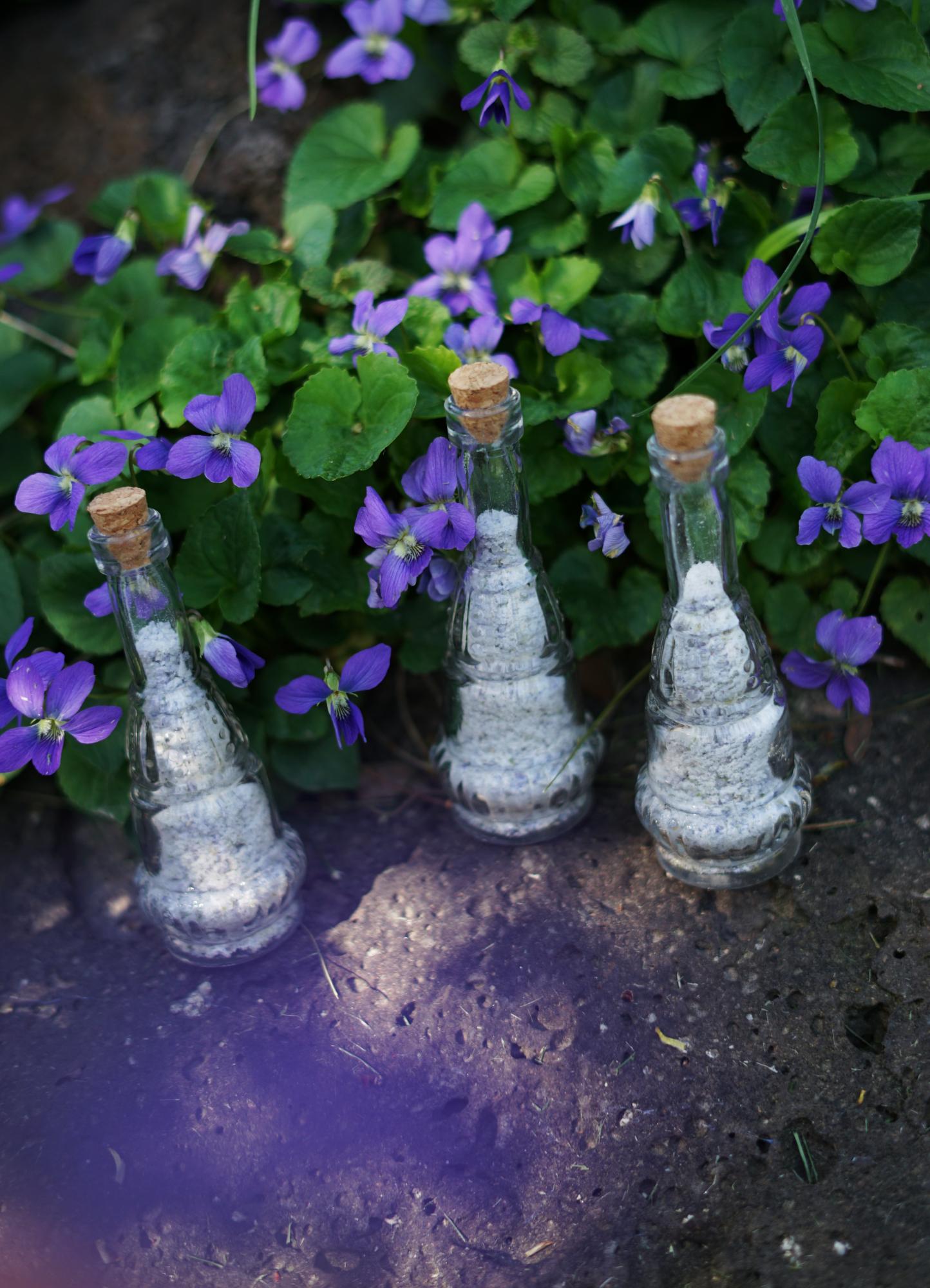 violetsugar2small.jpg