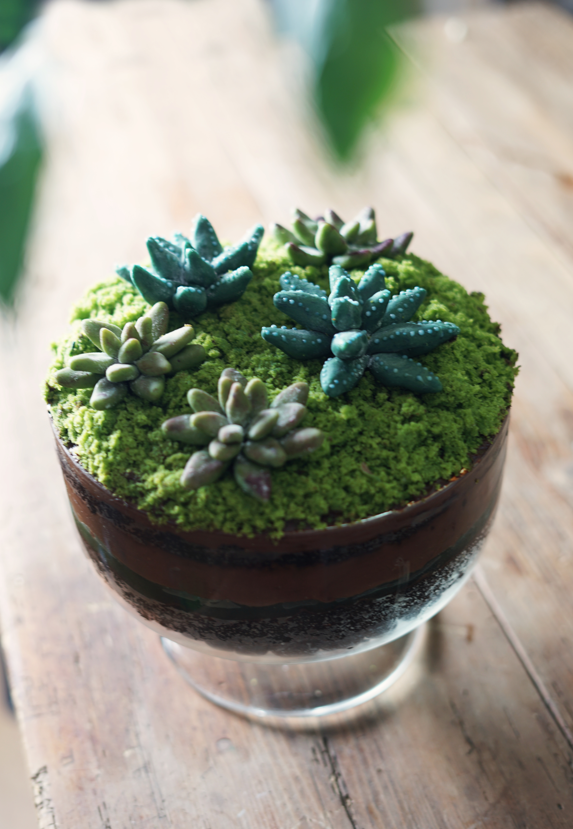 terrariumtrifle6small.jpg