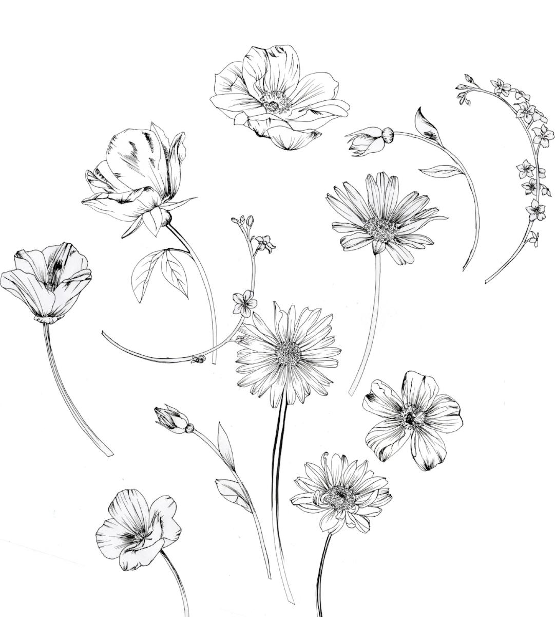 flowers for Ned.jpg