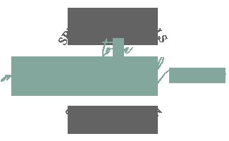 1481065012-logo-main.png