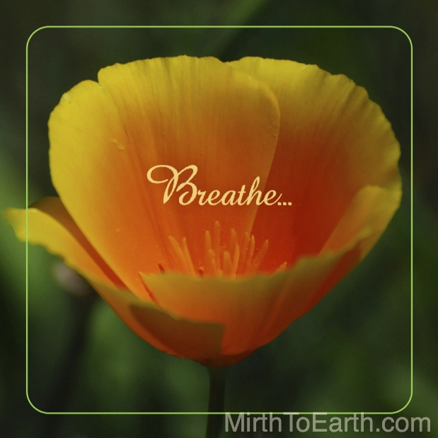 WEEK 27 Breathe.jpg