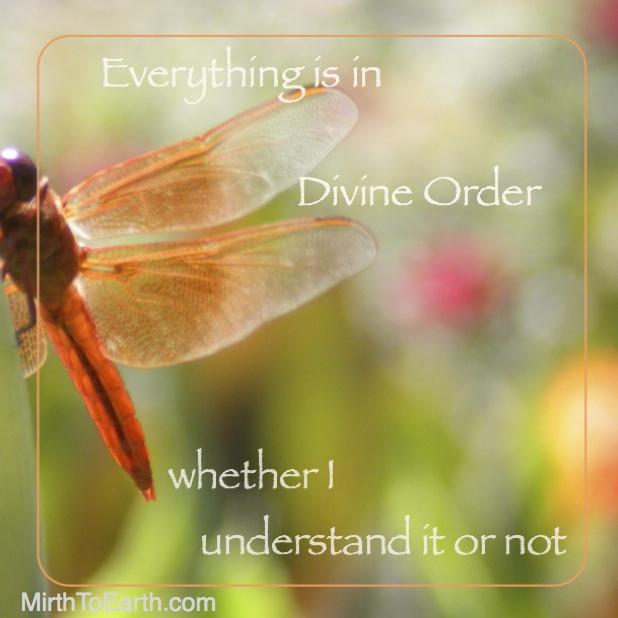 WEEK 33 Divine Order.jpg