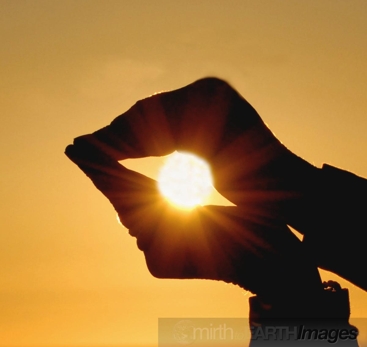 cupped sun copy.jpg