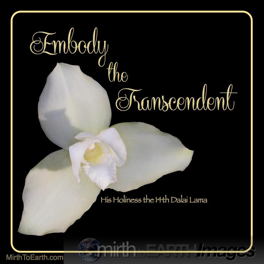 embody the transcendent.jpg