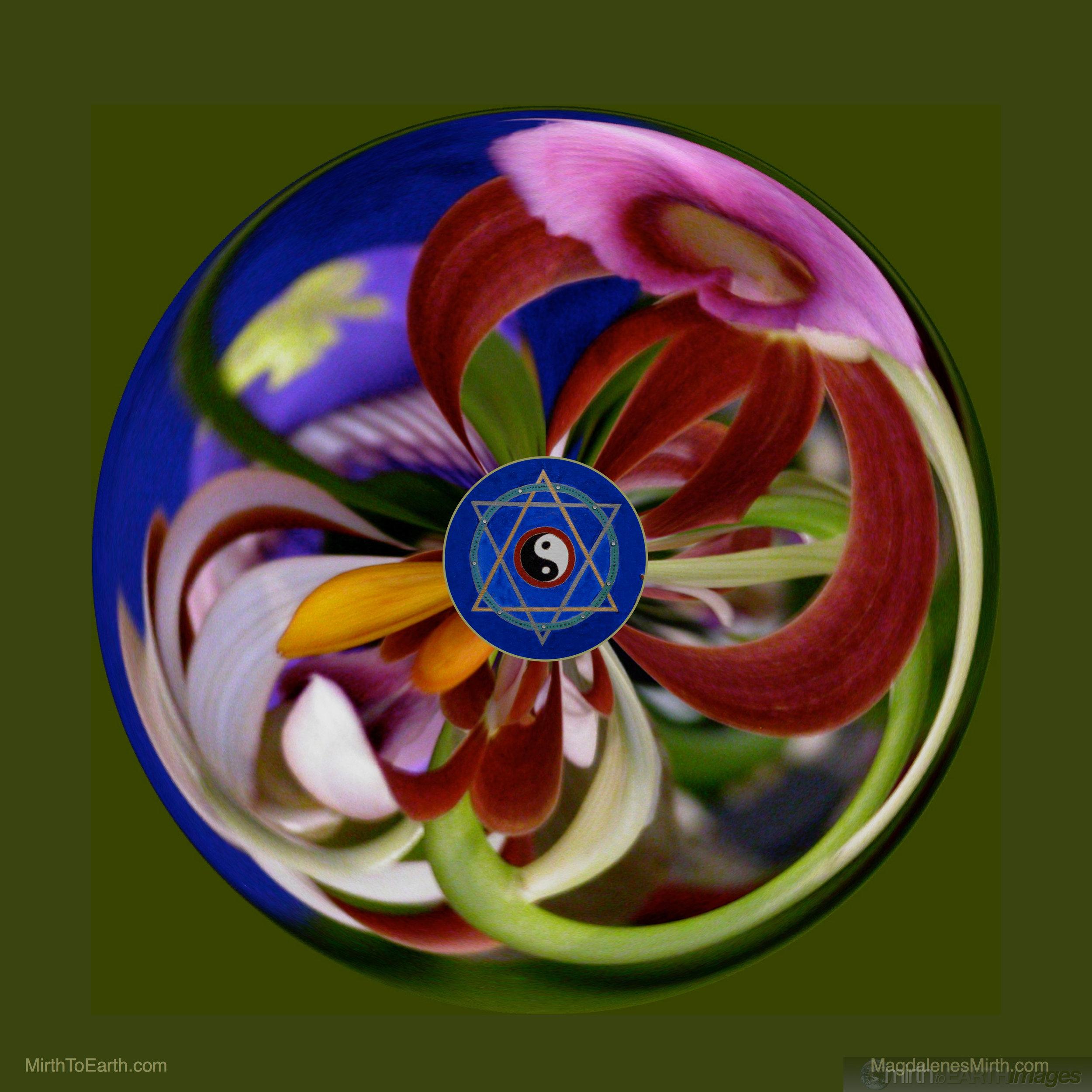 Yin Yang Orb logo.jpg