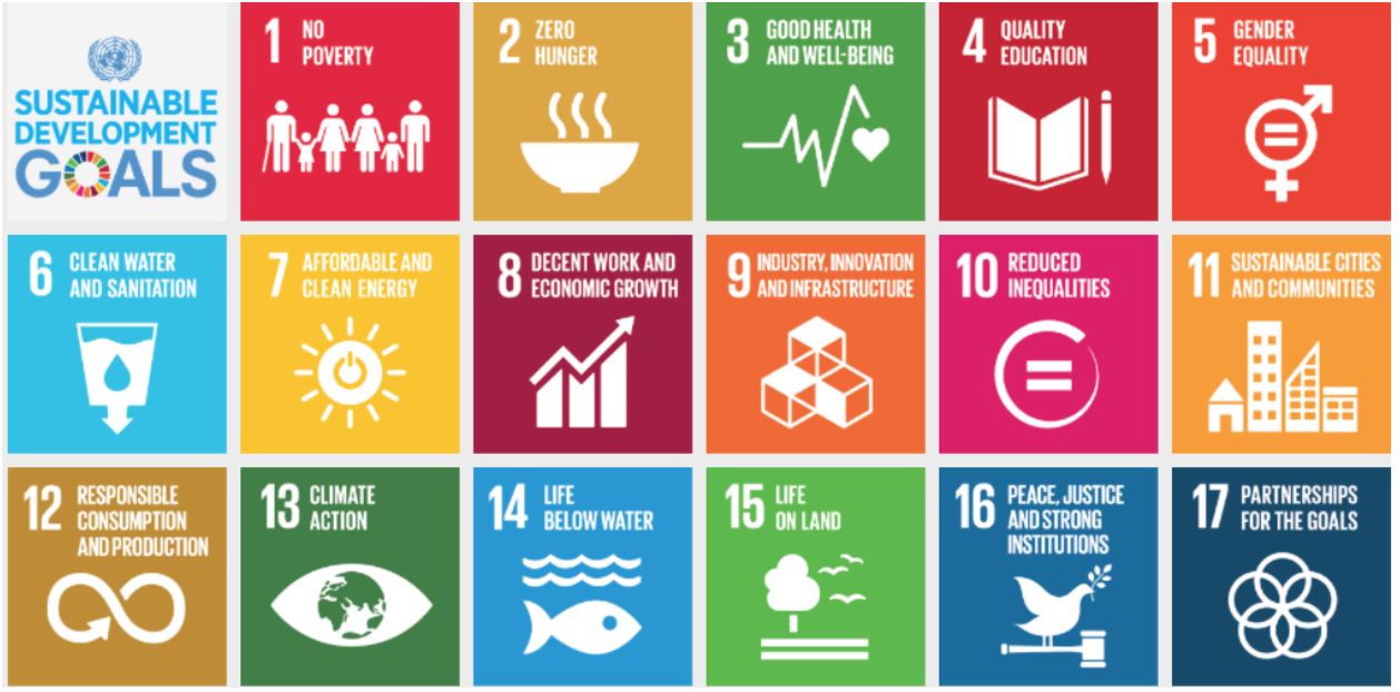 Sustainable development goals shaped by the UN being applied to Burkina Faso