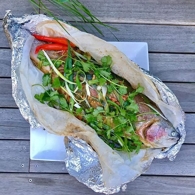 MOTHER'S DAY LUNCH IDEA 🌟 ... it's a delicious Ginger & Shallot Steamed coral trout. . Yes making mum pancakes and chocolate treats is great but a gorgeous lunch with this as the centre piece is a sure win and sign of appreciation ❤️ . ✨ recipe in BIO! On the blog... team it up with some coconut rice and Asian greens. . #nutrition #seedoflifehealth #healthyeating #health #recipes #mothersday2019 #fitfoodie #easyrecipes #fish