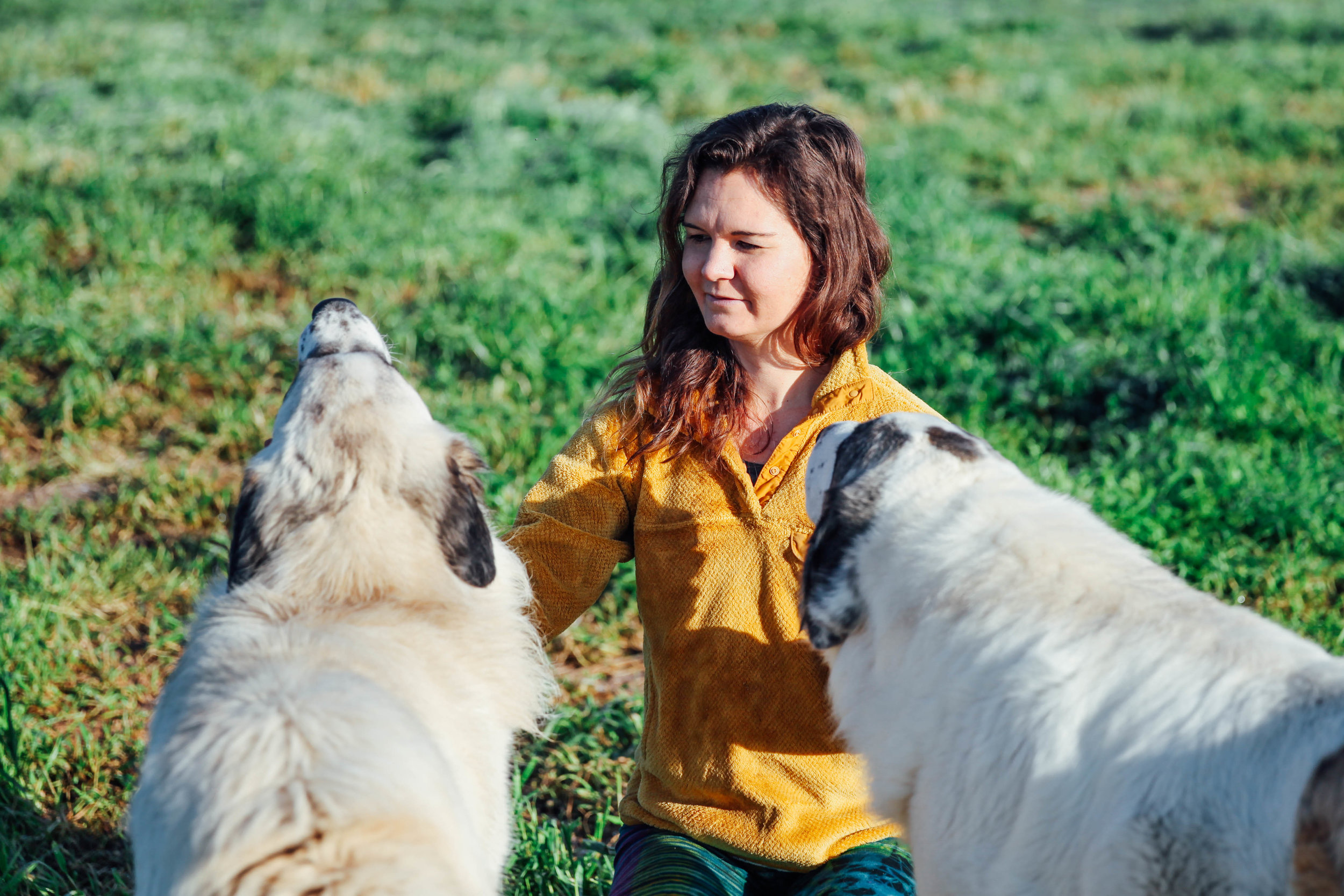 Primal Pastures Photos-20170318-54.jpg
