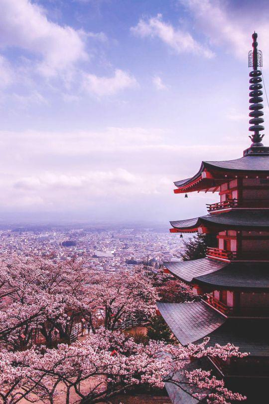 Japan Honeymoon Wedding Blossom