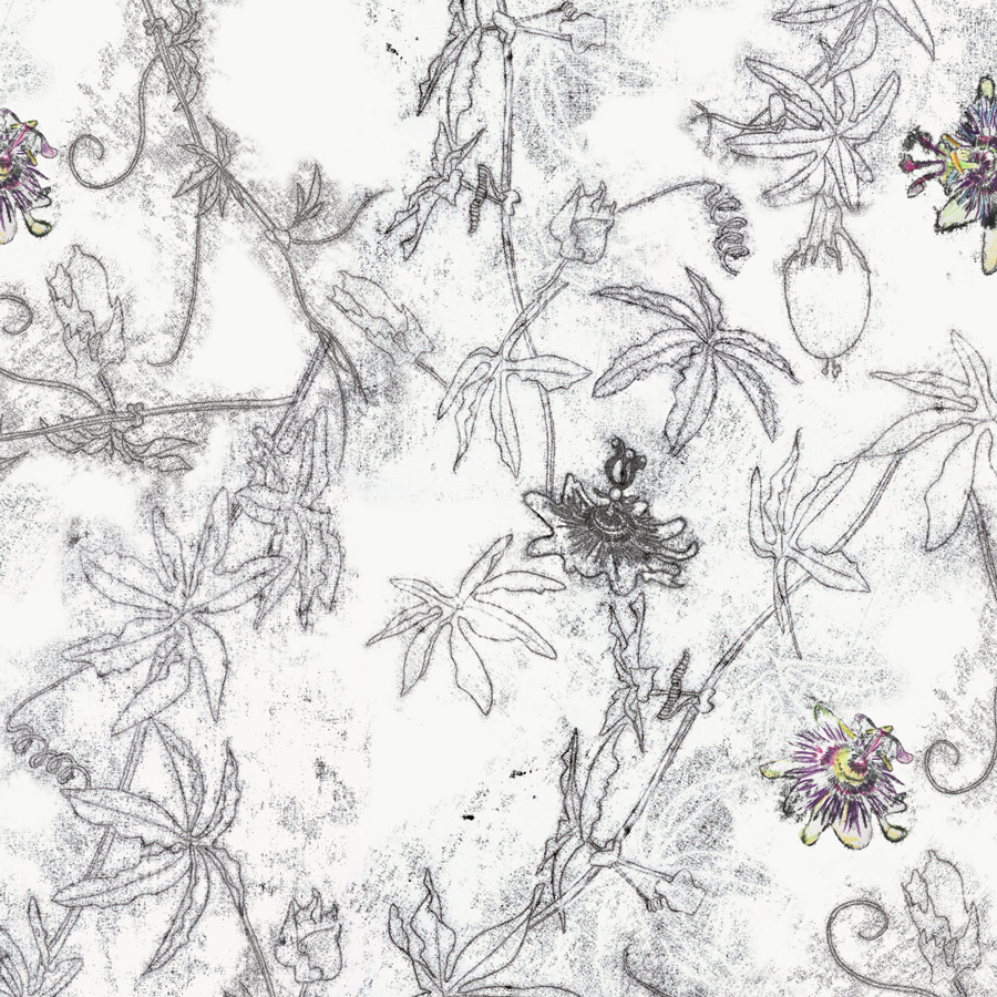 Passiflora Print